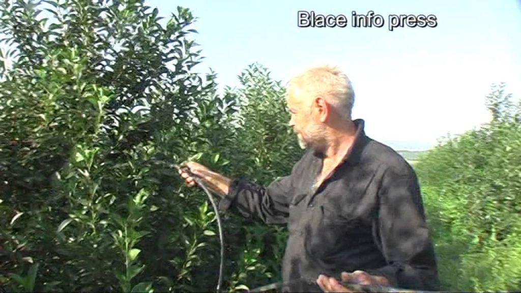 Blace: Lopovi iz voćnjaka odneli sistem za navodnjavanje dužine oko 3700 metara