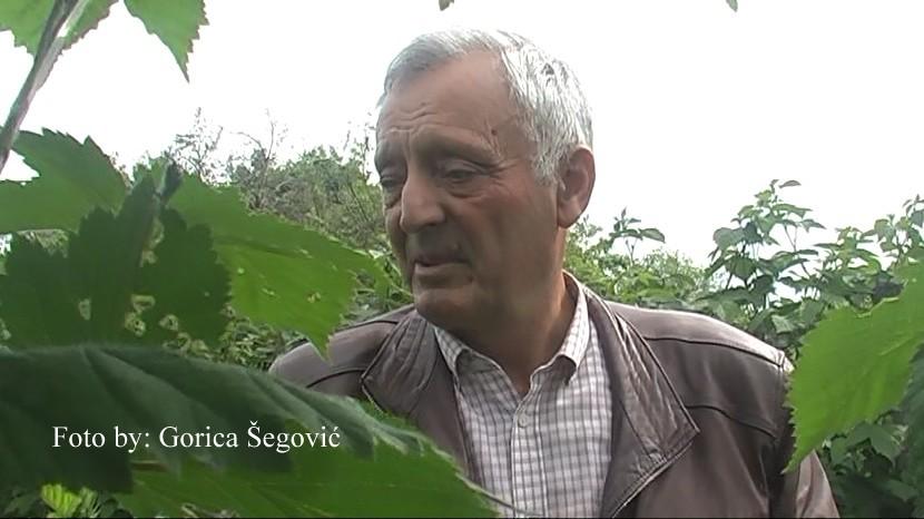 Radovan Radovanović - voćar sela Sagonjeva